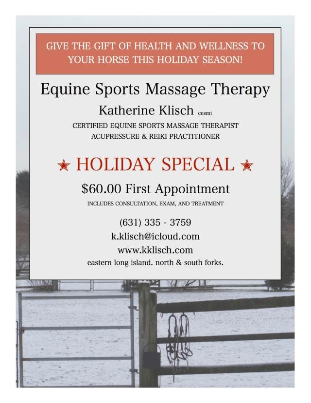 Equine Sports Massage Holiday Special
