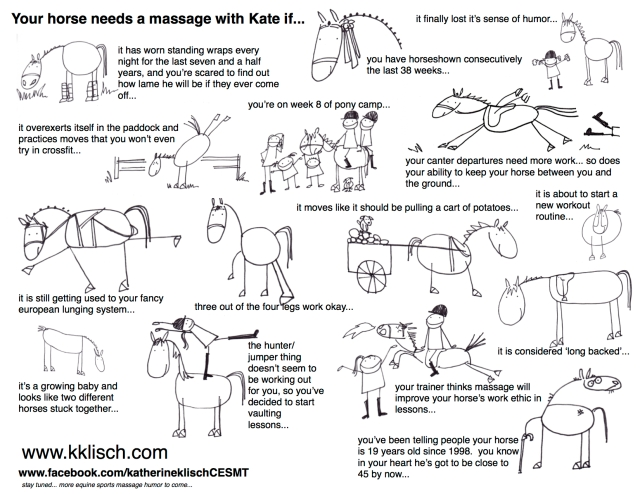 Your horse needs a massage with Kate if...